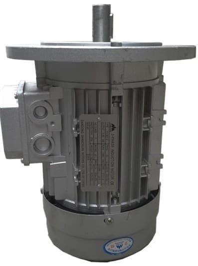 B5立式三相异步铝壳电机